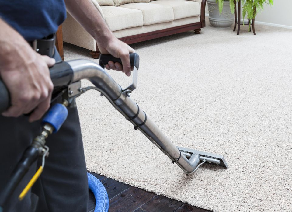 How to Steam Clean Your Carpet