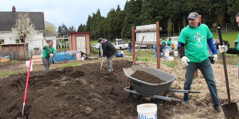 Problems Potting Seedling Trees
